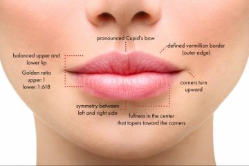 מילוי שפתיים – המדריך המלא